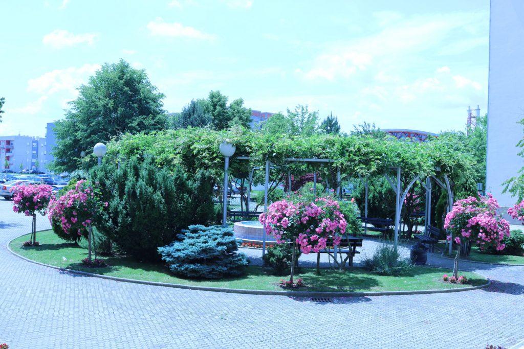 dom za starije i nemocne osobe - dvoriste